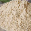 Wheat Protein Isolate Powder Bulk