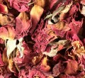 Rose Buds & Petals Red Bulk