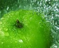 Green Apple Fruit Essence Distillate Water Bulk