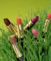 Truly Natural Lipstick Mocha Latte Honeybee Gardens CLOSEOUT