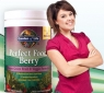 Perfect Food Berry Super Green Formula 240g Powder Garden of Life