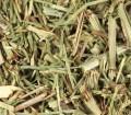 Horsetail (Shavegrass) (Equisetum Arvense) Bulk