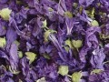 Malva Whole Herb & Flowers Light Blue Wildcrafted Bulk